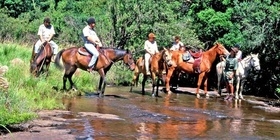 Horse Riding in the Breedekloof