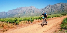 Mountain Biking in the Breede Valley